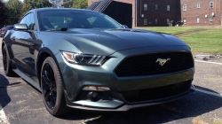 Ford Mustang: Will It Rally?
